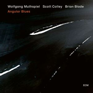 Picture of Wolfgang Muthspiel, Scott Colley, Brian Blade ‎– Angular Blues