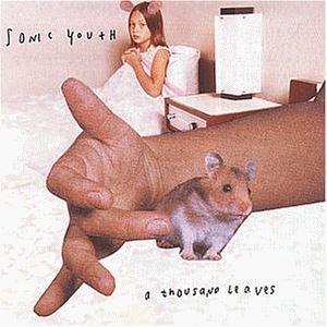 Изображение Sonic Youth – A Thousand Leaves