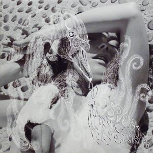 Изображение Björk – Vespertine