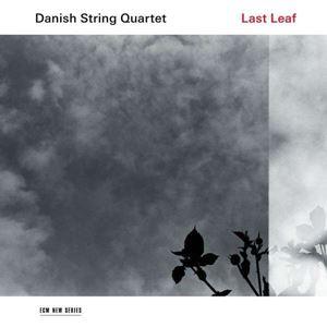 Изображение Danish String Quartet – Last Leaf